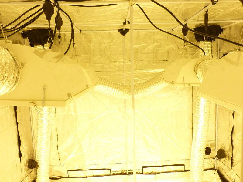 Norcals Grow Lab 240 4 1000 S Plus Veg And Cloning Tent