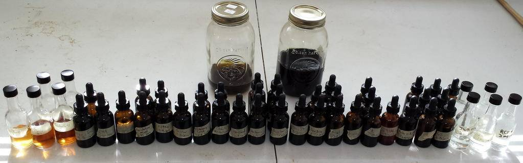 how to make reishi tincture with everclear