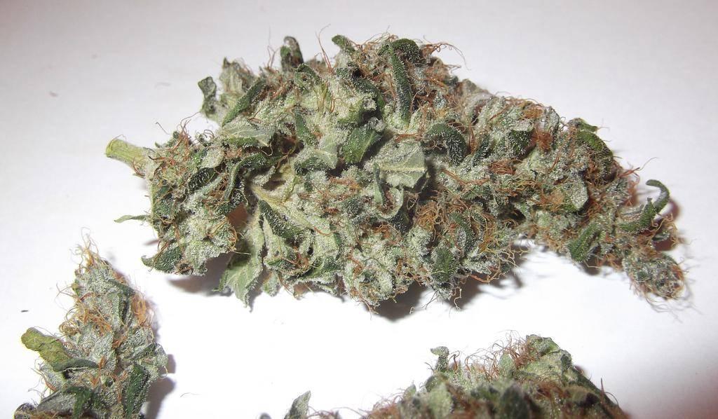 Stinky Pinky Weed Stinky Pinky Buds