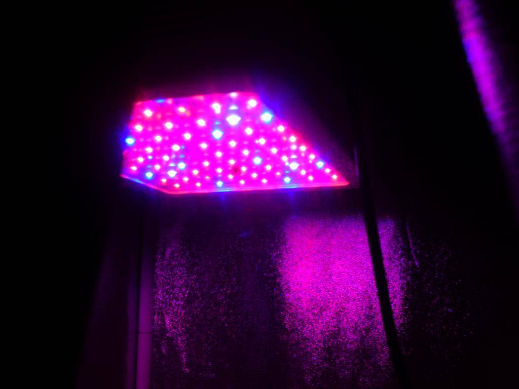 Any reasonable way to use Cobs/led for 3x3 veg/flower under